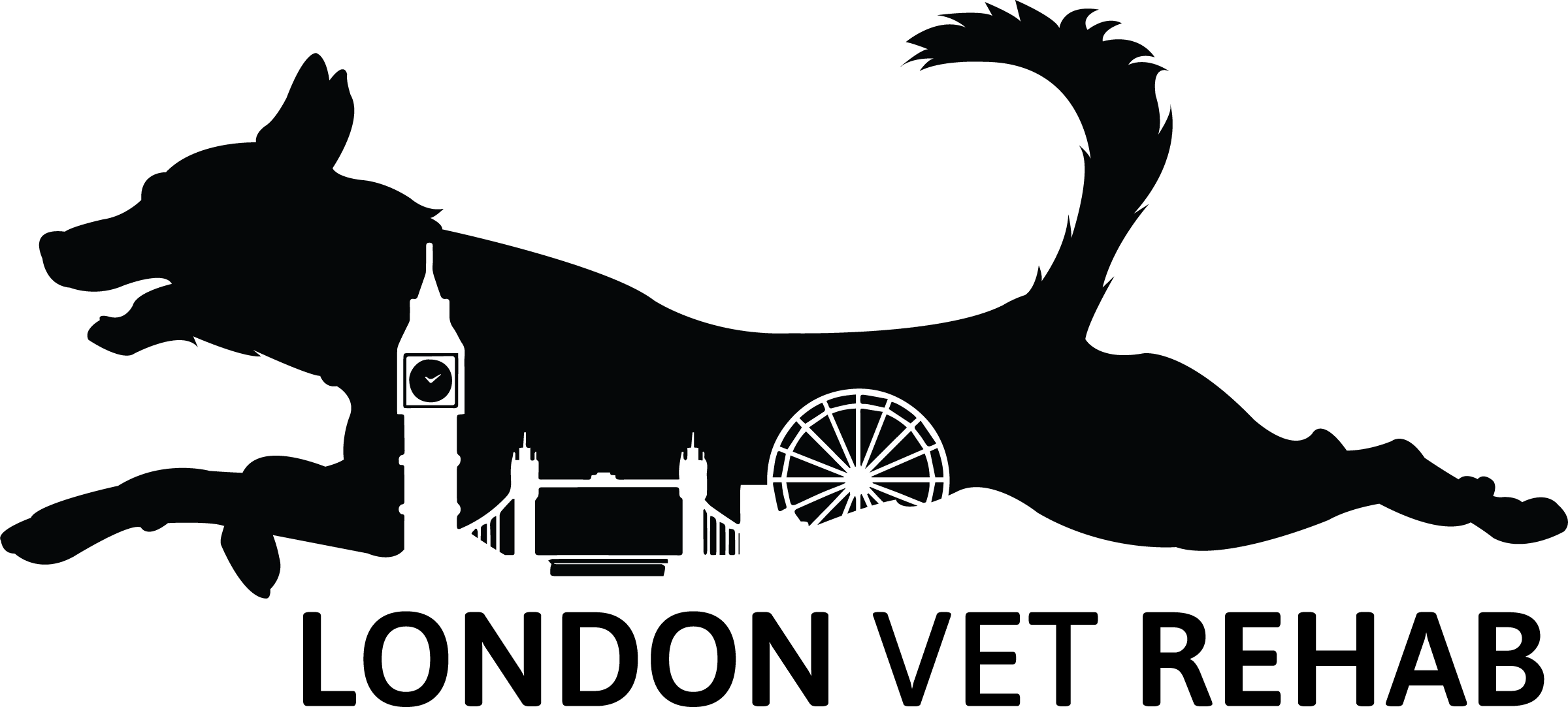 London Vet Rehab